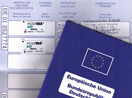 Impfunterlagen EU Impfpass